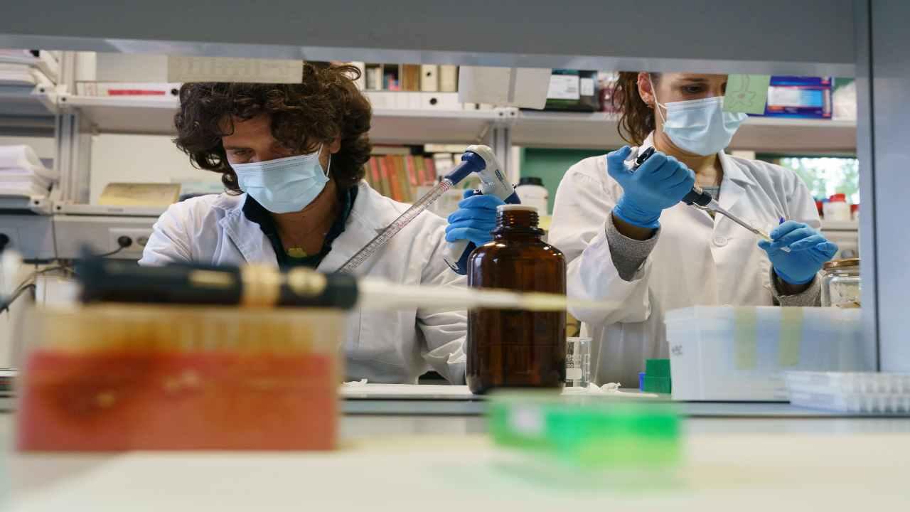 Vaccino Moderna efficacia virus