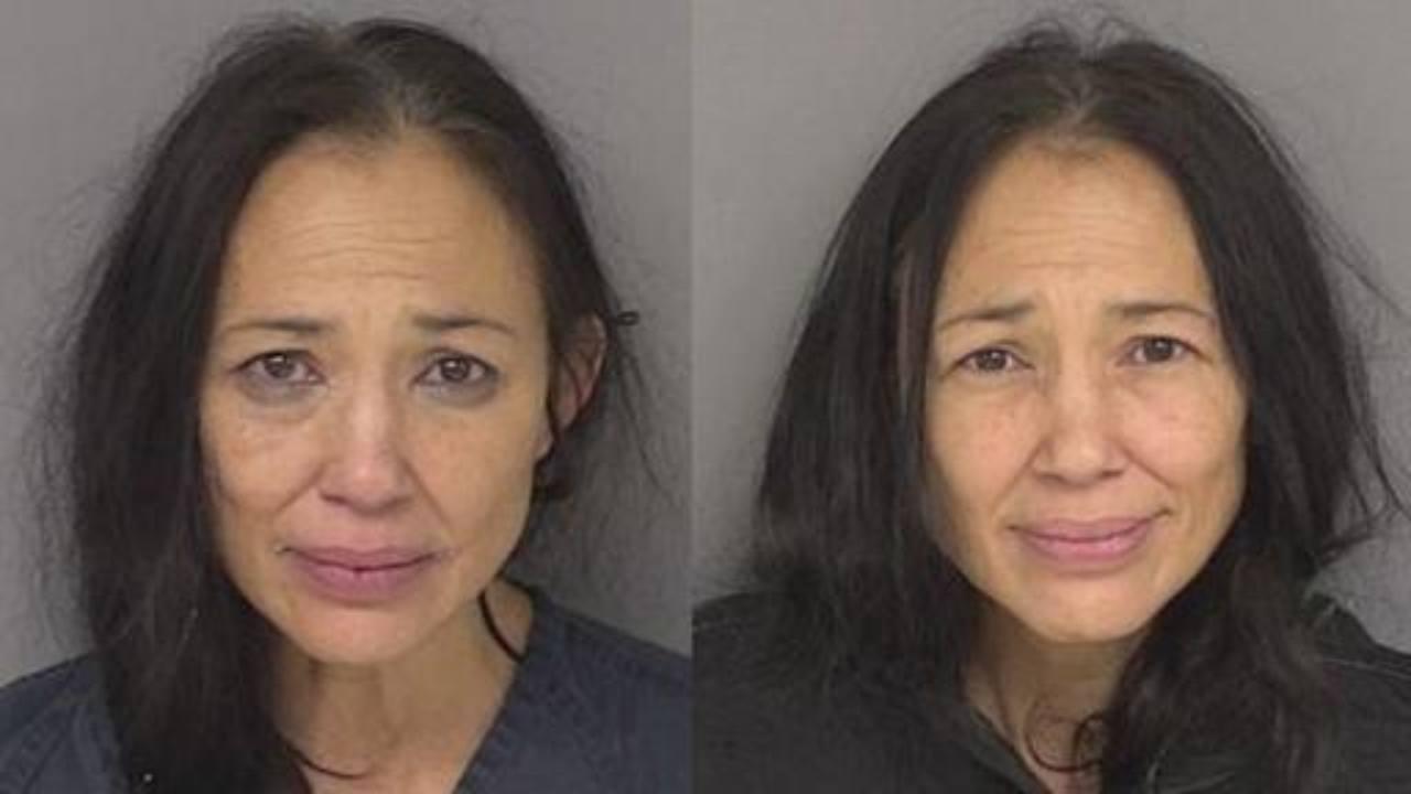 Irene Bedard Pocahontas arresto