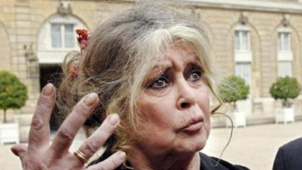 """Brigitte Bardot scandalosa: """"Il Covid è una cosa buona"""""""