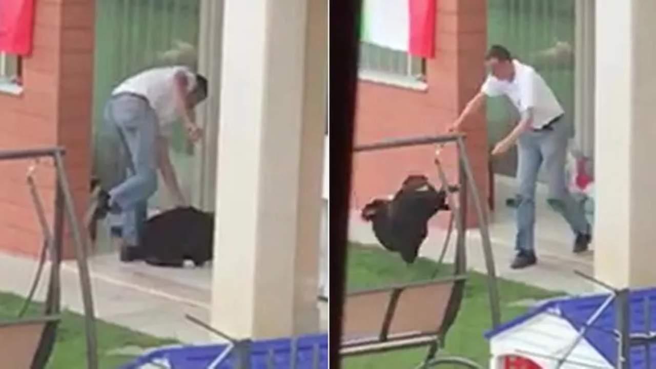 uomo picchia il cane Striscia