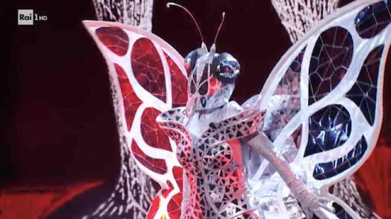 cantante mascherato farfalla