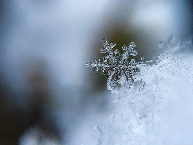 foto perfetta sulla neve
