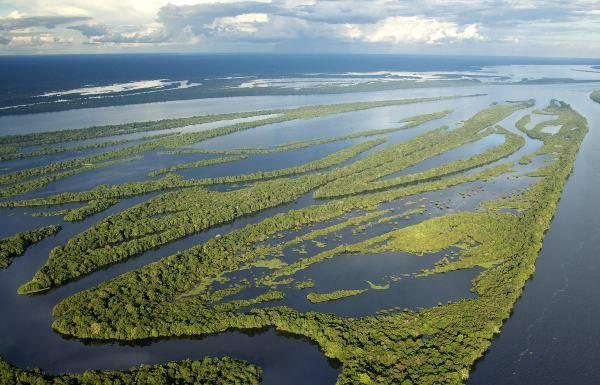 Rio Negro, Amazzonia (pixabay) viaggio amazzonia come