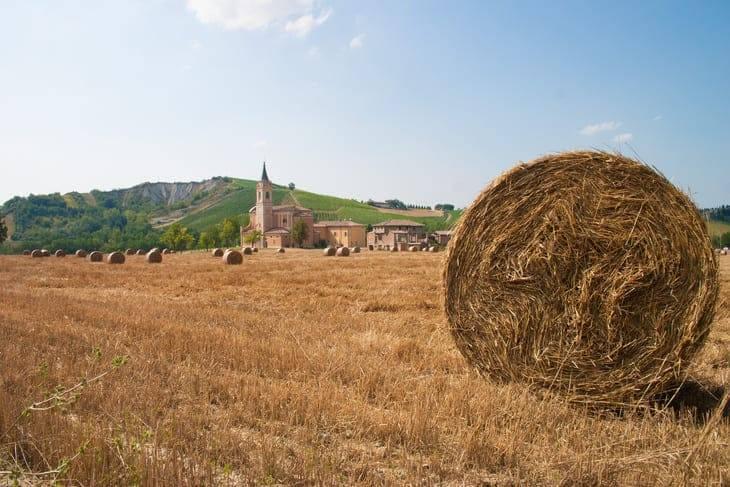 casa vacchi