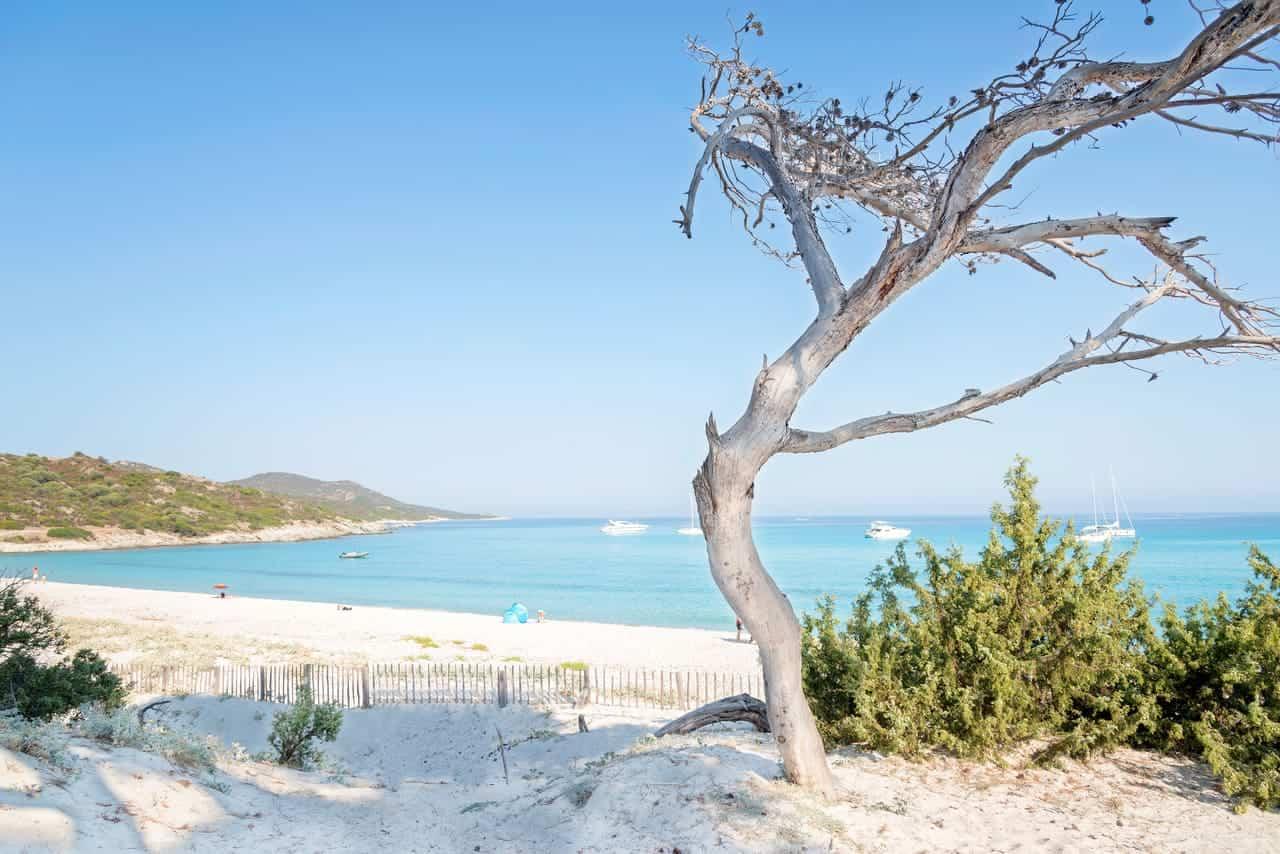 spiaggia di Saleccia in Corsica