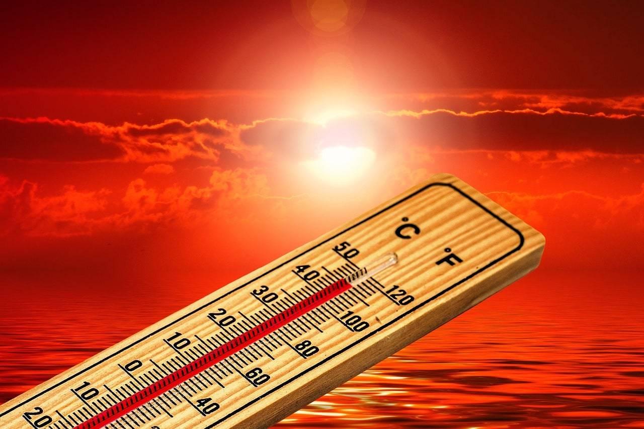 caldo morti