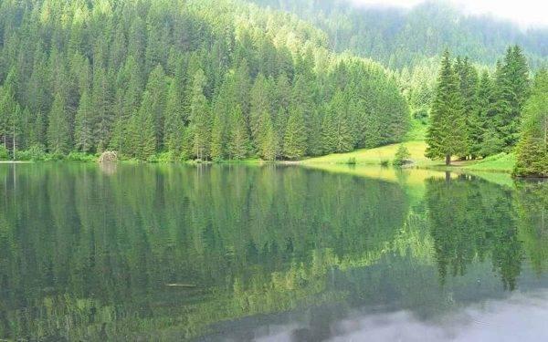 Il Trentino regala una vacanza gratis