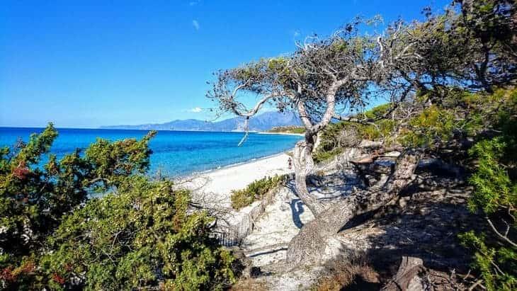 spiagge corsica da vedere