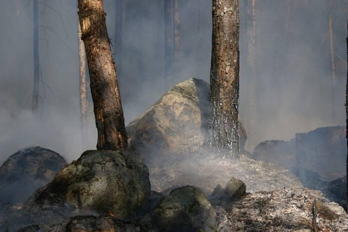 Tragedia incendi in Sardegna