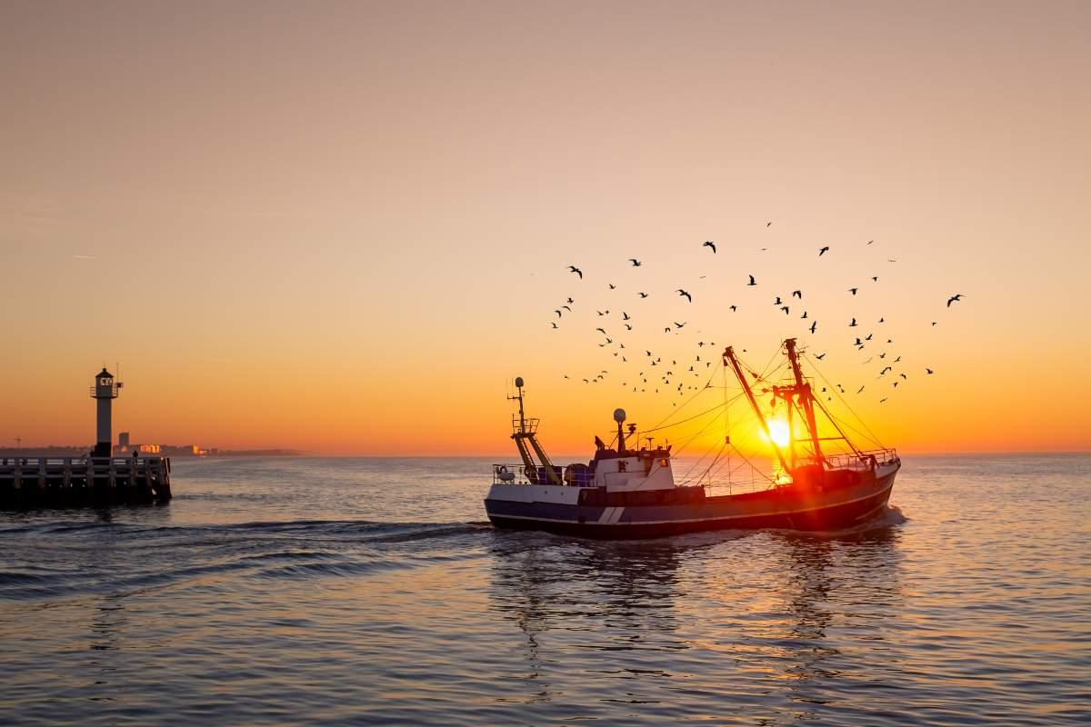 Pescaturismo: l'esperienza sostenibile