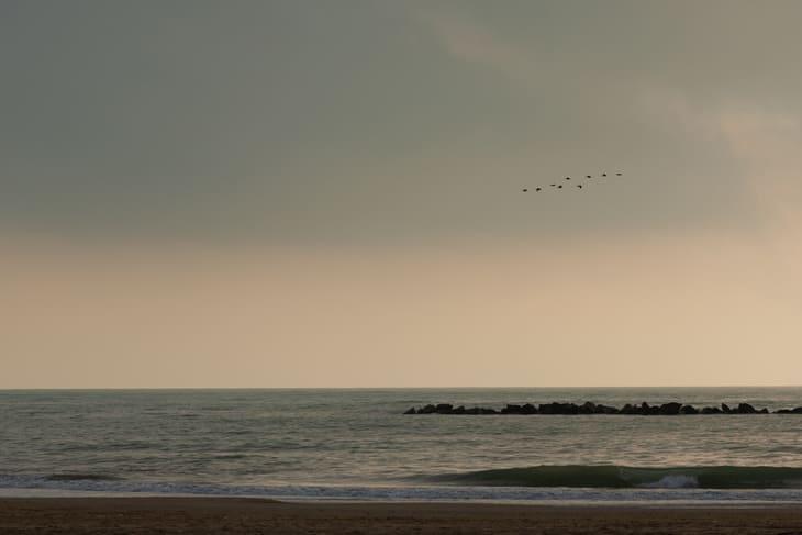 spiagge selvagge abruzzo