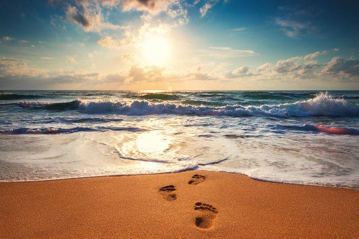 Wave Walking come s ifa