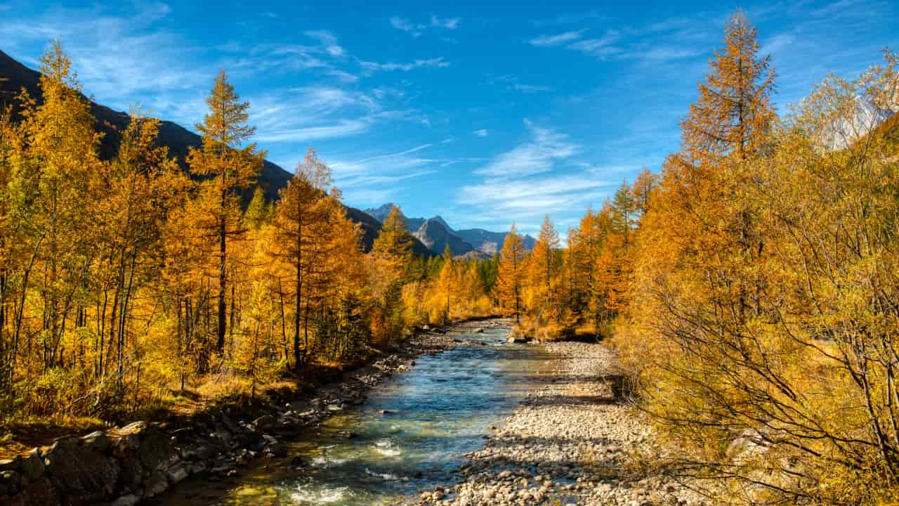 foliage valle d'aosta