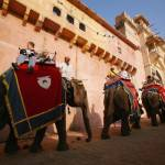 Cartier Holds Elephant Polo Match In Jaipur