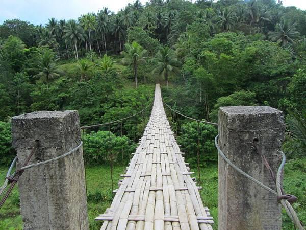 Bamboo Hanging bridge in Bohol Filippine