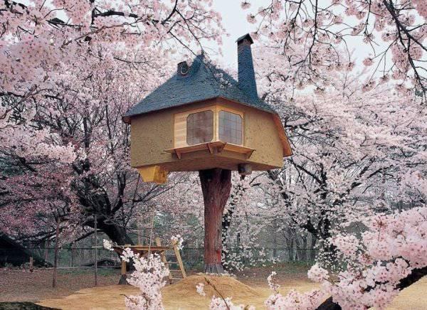 casa sull'albero in Giappone