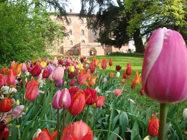 Castello di Pralormo, Torino