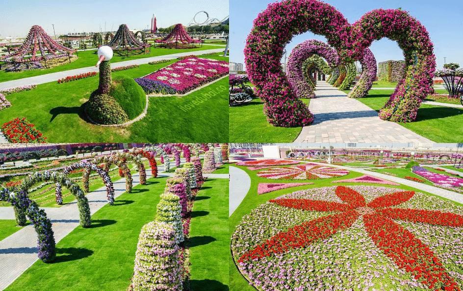 Dubai miracle garden il giardino pi grande al mondo - Il giardino di ausonia ...