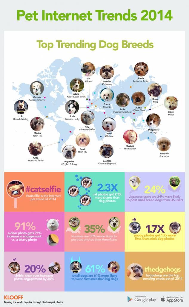 grafico cane preferito per nazione