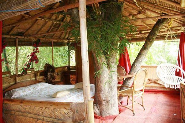 Safariland Treehouse Resort