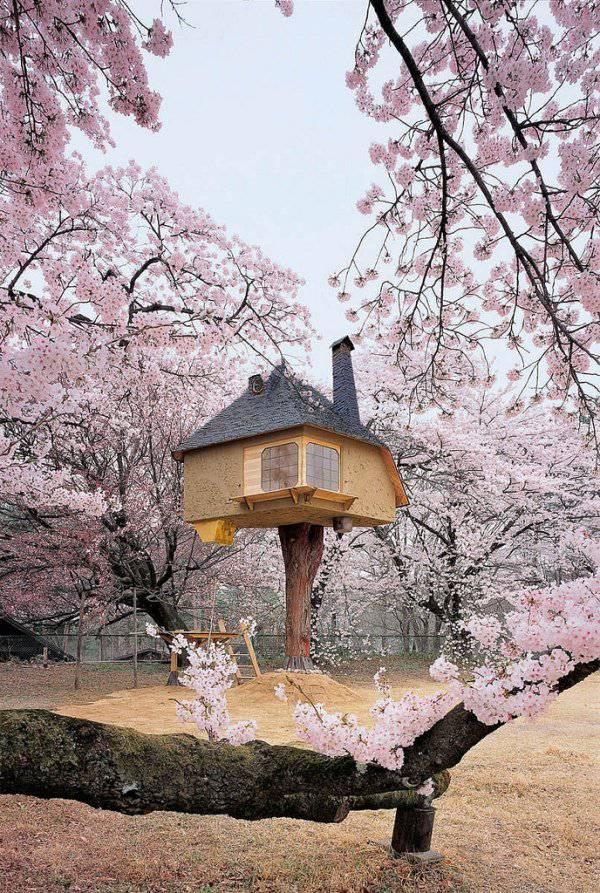 Casa sull 39 albero curiosit e magia dal giappone foto - Tasse sull acquisto della prima casa ...