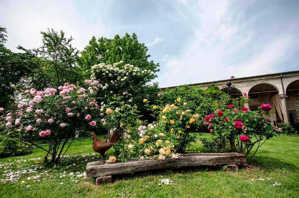 castelloquistini_fioriture_14