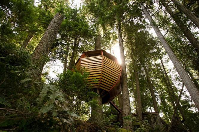 Ecco la casa sull 39 albero pi bella del mondo foto e for La casa progetta le foto interne