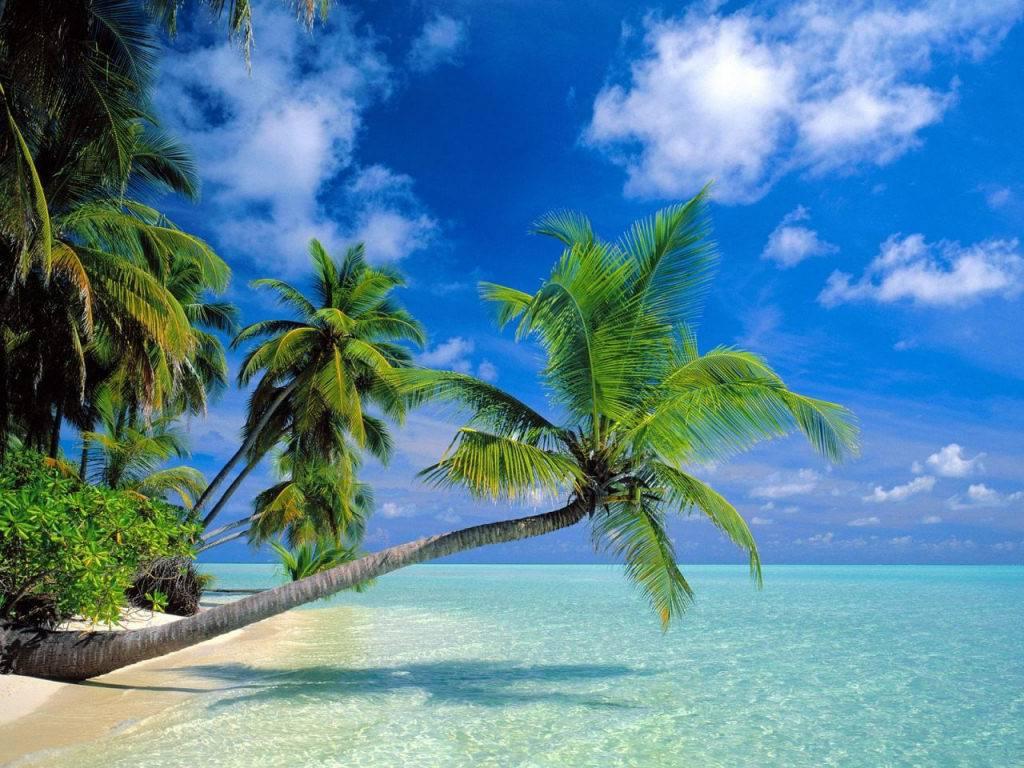 maldive-0