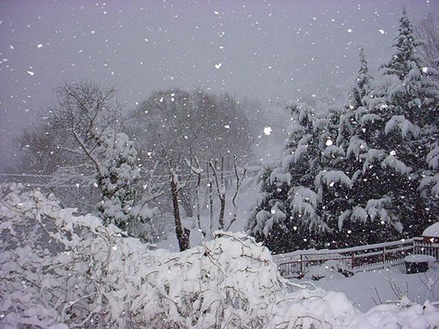 Immagini Natale Neve.Previsioni Meteo Natale 2011 Neve Sugli Appennini Pioggia