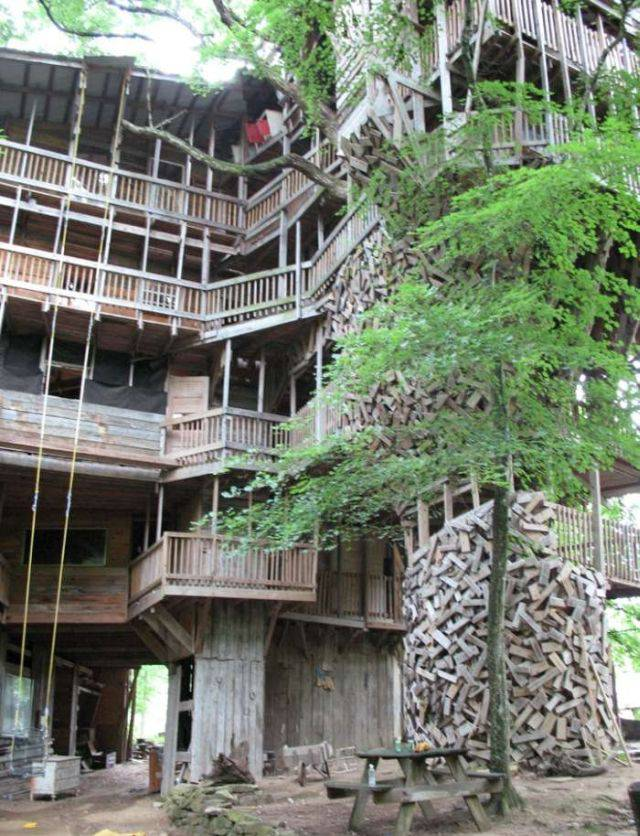 tallest_treehouse_10