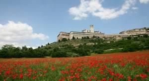 Veduta di Assisi (PG) (foto dal web)